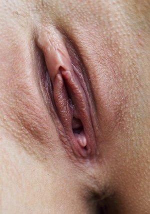 Close Up Pics